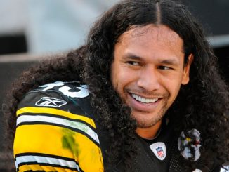 Troy Polamalu retires