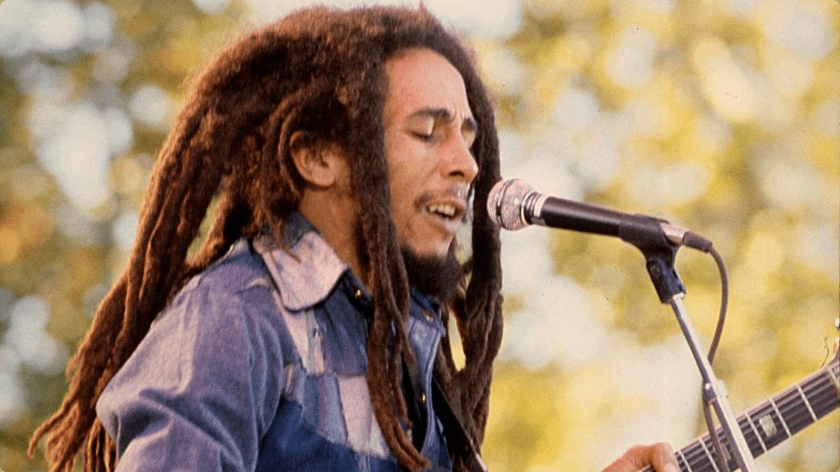 Stephen Marley - Organically Grown Sampler