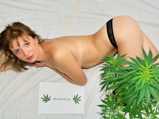 Marijuana strippers