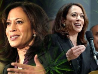 Kamala Harris and Marijuana Legalization