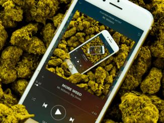 More Cannabis